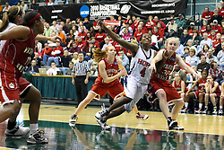 20 March 2010: Philana Greene and Kelsey Robb jostle for position during a free throw. The Flying Dutch of Hope College fall to the Bears of Washington University 65-59 in the Championship Game of the Division 3 Women's NCAA Basketball Championship the at the Shirk Center at Illinois Wesleyan in Bloomington Illinois.