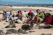 Galapagos December 2016 Group<br /> North Seymour Island<br /> Galapagos<br /> Ecuador,  South America<br /> Ginny Carter,Tullia Corbisiero, Jo Ann Seagren, Kate Corbisiero, Zach Montes, Parker Seagren, Pietro Corbisiero & Paul Montes