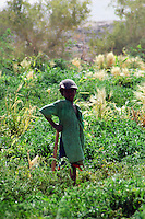 Niger, Agadez, Tidene, 2007. A boy takes a break from tending fields. Tuareg live on site and take turns tending and protecting the crops.