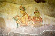 Sri Lanka. Sigiriya Frescoes.