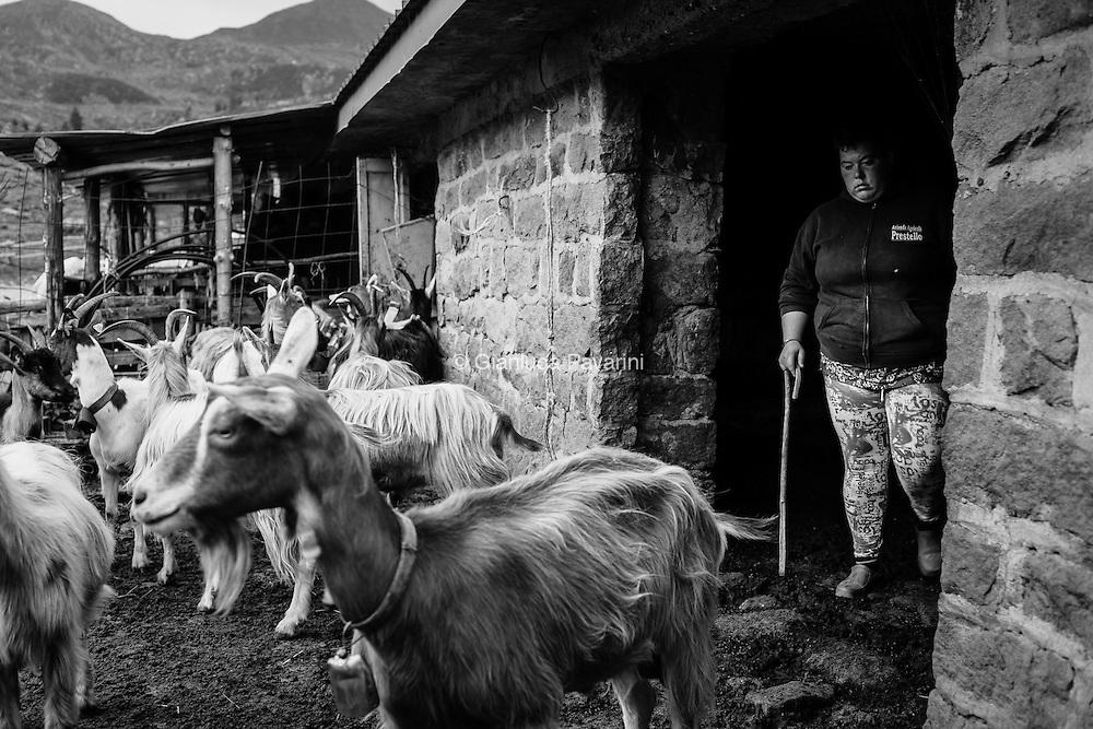 A 2000mt di quota, nel cuore delle alpi Italiane, dove per telefonare bisogna percorrere 10 min di mulattiera in auto.<br /> Le estati di due giovani sorelle, Ylenia e Jessica sono state tutte passate qui, in alpeggio. <br /> 22 e 25 anni dopo il diploma hanno deciso di tornare alle loro radici, ad essere loro stesse, ad essere &ldquo; MALGHESE&rdquo; (contadino). <br /> Ylenia si dedica alle 120 vacche, mentre Jessica alle capre, 250 &ldquo;Bionde dell'Adamello&rdquo;.<br /> L'erba di alta quota &egrave; differente, ed &egrave; l'unico modo per ottenere prodotti di alta qualit&agrave;: il Silter, fatto con il latte di mucca; ed il Fatul&igrave;, formaggio prodotto da Jessica affumicando con erbe aromatiche il latte di capra.<br /> Con il padre sono fra i contadini che trascorrono pi&ugrave; tempo in alpeggio, circa 4 mesi, da luglio ad ottobre, fino a che la neve non copre l'erba dei pascoli. Il loro ritmo di vita &egrave; dettato dal bestiame, al mattino ci si alza presto per la prima mungitura, si lavora fino a sera quando dopo la seconda mungitura con il buio si rientra in malga.<br /> <br /> &ldquo;Horele&rdquo; nel dialetto locale significa sorelle, e nel caso di Ylenia e Jessica non poteva che diventare il titolo di questo lavoro, sempre assieme e sempre sorridenti, anche quando c'&egrave; da camminare per ore sotto la pioggia per recuperare una vacca che si &egrave; persa. Sono uniche come unico &egrave; il loro legame con la natura e gli animali.<br /> Mentre la popolazione mondiale si sposta sempre di pi&ugrave; nelle citt&agrave;, Ylenia e Jessica hanno scelto di rimanere, vivere e lavorare nei luoghi dove sono nate, e ne sono felici.<br /> Una felicit&agrave; che va ben oltre il concetto che i loro coetanei hanno, una felicit&agrave; che non si basa sul successo economico, ma su solide e semplici basi che in molti scoprono troppo tardi.<br /> <br /> EN. At an altitude of 2000 meters, at the heart of the Italian Alps, where making a phone call means a 10-