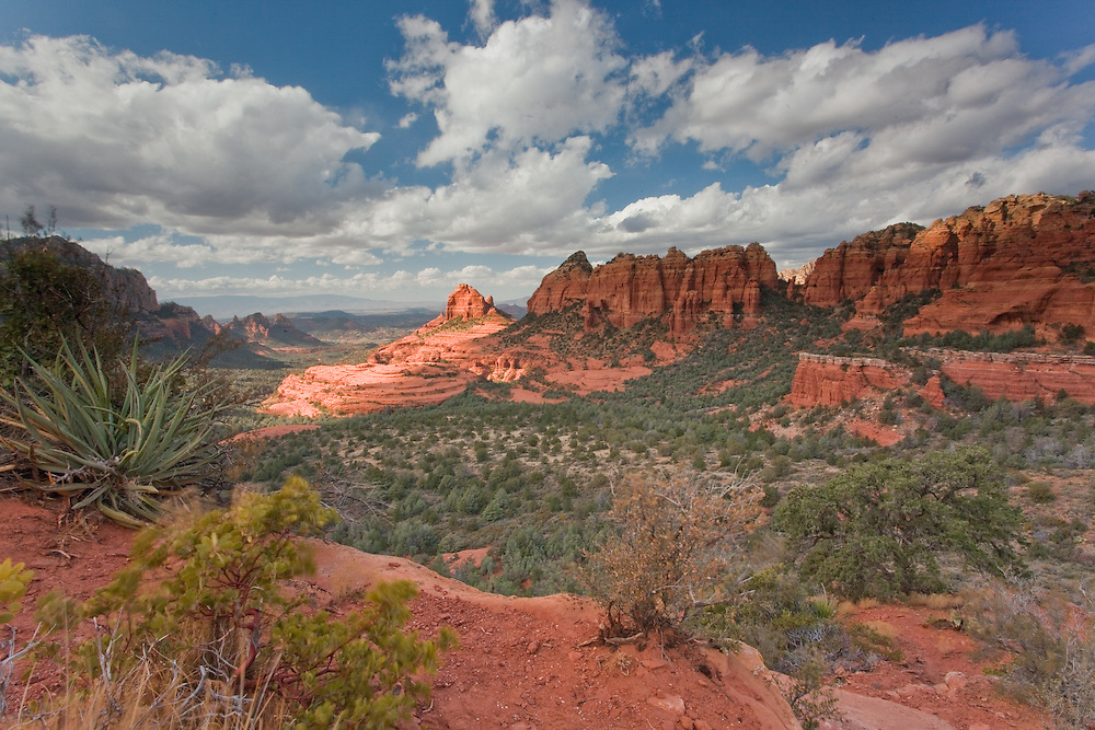 "A vista of sedona and ""cowpie"" while driving on the very bumpy Schnebley Hill road in Sedona, Arizona."