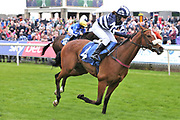MISTER BELVEDERE (4) ridden by Miss Sophie Dods and trained by her father Michael Dods winning The Queen Mothers Cup (for Lady Amateur Riders) over 1m 4f (£20,000) during the Macmillan Charity Raceday at York Racecourse, York, United Kingdom on 16 June 2018. Picture by Mick Atkins.