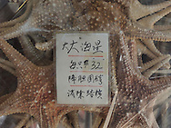 Packaged star fish for sale, Hong Kong, China, Southeast Asia