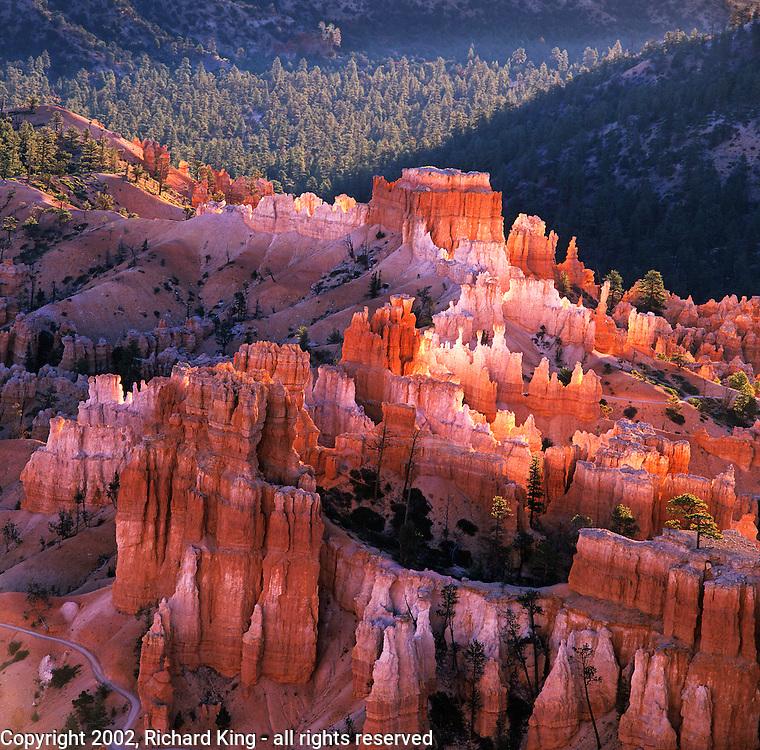 Hoodoos At Sunrise, Bryce Canyon