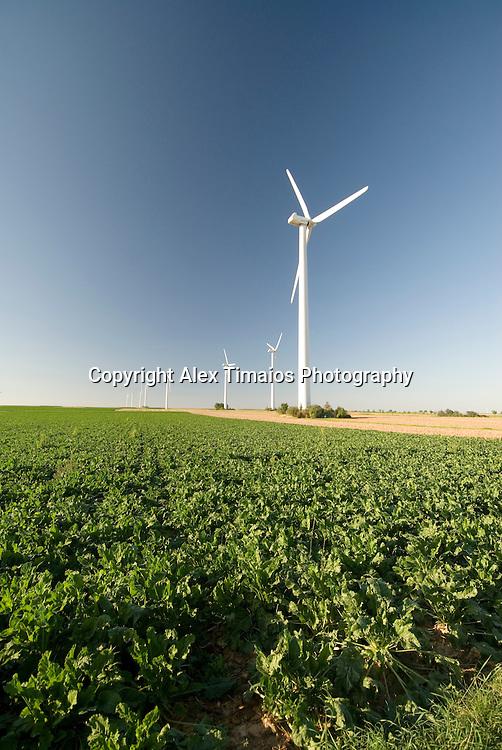 Wind Energy Generators in an agrar field