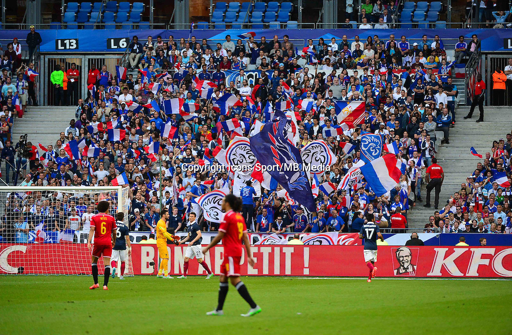 Supporters France - 07.06.2015 - France / Belgique - Match Amical<br /> Photo : Dave Winter / Icon Sport
