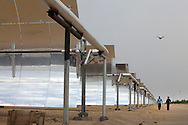 Workers walk by panels of reflective parabolic trough at Godawari Green Energy Limited Solar-Thermal Power Plant in Nokh, Rajasthan, India on June 10, 2013. 5760 panels concentrate and reflect the heat on to a receiver tube which contains fluid that is heated to create steam to drive turbines. <br /> (Photo by Kuni Takahashi)