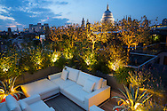 Outdoor furniture on roof terrace, uplit Phillyrea angustifolia standard underplanted with Astelia nervosa 'Westland', Pinus mugo 'Winter Gold' and agapanthus, view to St Paul's Cathedral
