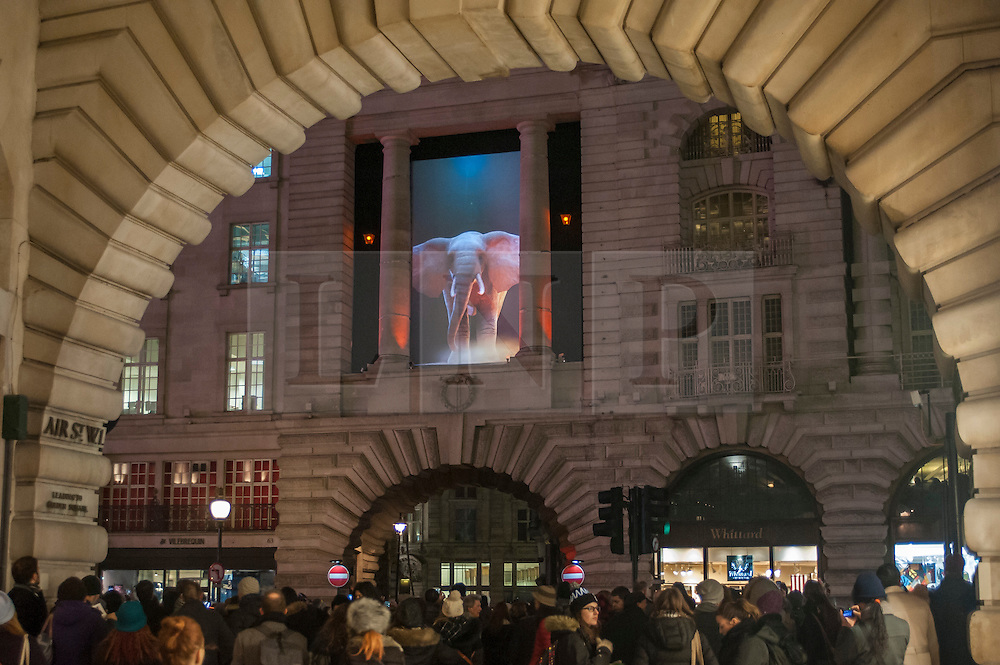 "© Licensed to London News Pictures. 14/01/2016. London, UK. ""Elephantastic"" by Top'là Design / Catherine Grant above Regent Street.  The work forms part of Lumiere London, a major new light festival which commenced today to be held over four evenings and featuring artists who work with light.  The event is produced by Artichoke and supported by the Mayor of London.  Photo credit : Stephen Chung/LNP"