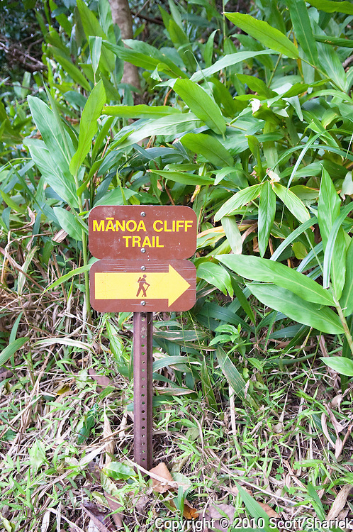 A sign pointing the way to the Manoa Cliff Trail.
