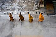 A group of Buddhist monks are walking on a street during their morning alms route in Mae Sai, (Sae) Northern Thailand.