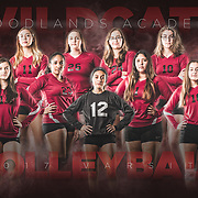 Team Poster - Volleyball (Varsity)