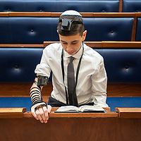 Benji Synagogue Portraits 20.01.2014