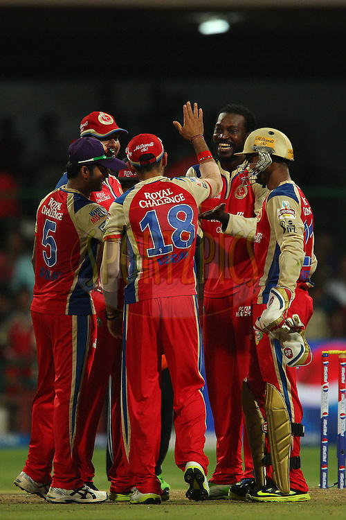 Chris Gayle celebrates the wicket of AG Murtaza during match 31 of the Pepsi Indian Premier League between The Royal Challengers Bangalore and The Pune Warriors India held at the M. Chinnaswamy Stadium, Bengaluru  on the 23rd April 2013..Photo by Ron Gaunt-IPL-SPORTZPICS ..Use of this image is subject to the terms and conditions as outlined by the BCCI. These terms can be found by following this link:..http://www.sportzpics.co.za/image/I0000SoRagM2cIEc