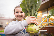 Eden Swain picks a kholrabi plant from her school's garden in Salem, Oregon.