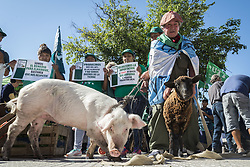April 17, 2018 - INT. 2018 April 17. City of Buenos Aires, Argentina.- Small farmers and family farmers give away in front of the National Congress, City of Buenos Aires, 30 thousands kilos of vegetables in favor of the law project that allows them access to their own land. (Credit Image: © Julieta Ferrario via ZUMA Wire)