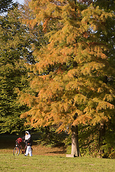 Woman with her bike under Tree in autumn.   (Photo by: Vid Ponikvar / Sportal Images).