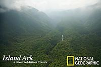 Rain forest covered floor of the Gran Caldera Volcanica de Luba.  Bioko Island, Equatorial Guinea, West Africa.