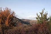 Foto di Donato Fasano Photoagency, nella foto : Basilicata Vall'D'Agri