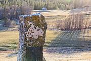 Norges største myntfunn, skatten, forgylt sølv, sølvmynter, minnesmerke, mynter fra Olav Kyrres tid (1067-1093), også åtte mynter fra Harald Hardrådes tid (1045-1066), 36 tyske mynter, to danske mynter, to imitasjoner av anglosaksisk mynt, og to som ikke lot seg identifisere. Funnet ble gjort på gården Gressli søndre under opptak av poteter i 1878. Myntene ble i hovedsak ervervet av Myntkabinettet i Oslo, noen få eksemplarer er utlånt til Tydal museum. 2253 mynter ble funnet i åkeren. Minnessteinen ble reist av Ungdomslaget Vårfryd i 1978.  Græslifunnet var et myntfunn, fra 1878 i Græsli i Tydal kommune i Sør-Trøndelag. 2 253 sølvmynter, noen sølvbiter og en fuglefigur i forgylt sølv ble gravd frem i potetåkeren til bonde Arnt Kristoffersen på Utstuggu eller Jo-Nils-gården. Funnet var, det største enkeltfunn av mynter som er gjort i Norge fra middelalderen, og det er reist en minnestein på funnstedet. De fleste myntene var norske, fra kong Harald Hardrådes tid. De yngste myntene var fra 1070-årene. Myntkabinettet ved Oldsakssamlinga i Oslo overtok alle myntene fra funnet.