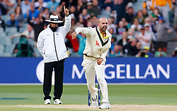 Australia Nathan Lyon celebrates prematurely as a LBW decision for the wicket of England's Joe Root was overturned during day four of the Ashes Test match at the Adelaide Oval, Adelaide.