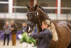 Kasprzak Anna, (DEN), Donnperignon<br /> Horse Inspection<br /> Reem Acra FEI World Cup Dressage Finals 2016<br /> © Hippo Foto - Dirk Caremans<br /> 24/03/16