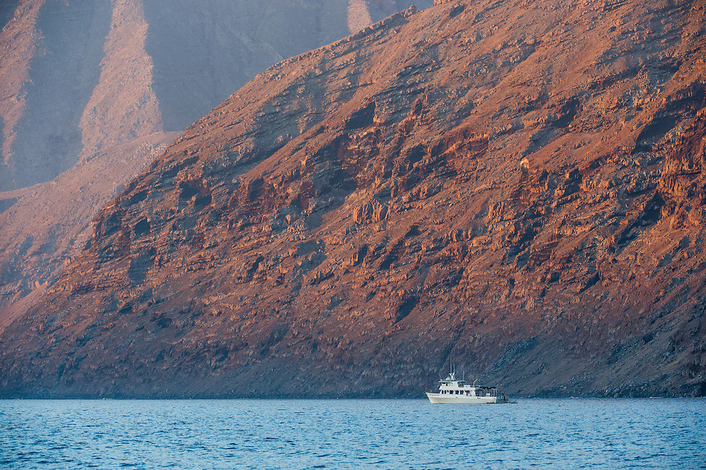 Tourism vessel that participate in the White Shark observation program of Guadalupe Island
