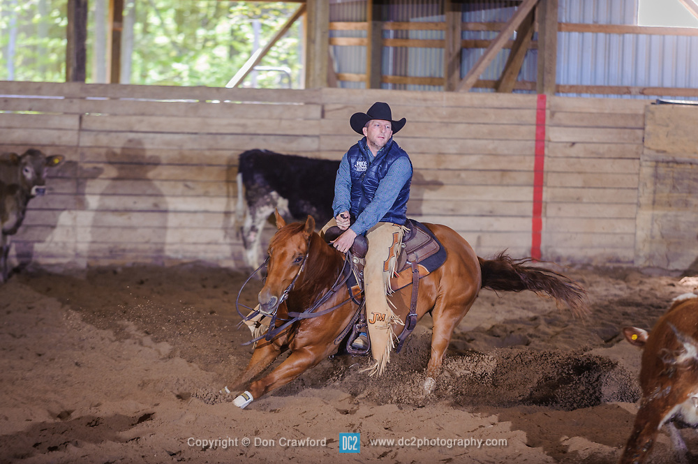 May 20, 2017 - Minshall Farm Cutting 3, held at Minshall Farms, Hillsburgh Ontario. The event was put on by the Ontario Cutting Horse Association. Riding in the Non-Pro Class is John Martin on Ray Too Smart owned by the rider.