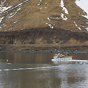 A small fishing boat in Ísafjörður harbor. <br /> <br /> Images from an ski touring adventure to Jökulfirðir, a series of fjords in west Iceland, with Bergmenn Mountain Guides and Borea Adventures. The tour takes skiers from fjord to fjord with the sail boat Aurora as a overnight base.