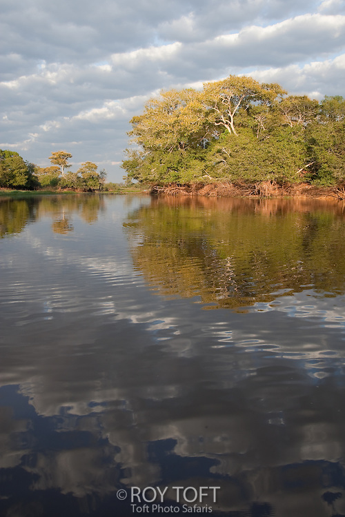 Picurui River and tropical forest, Pantanal, Brazil