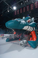 KELOWNA, CANADA - NOVEMBER 1:  Colten Heffley #25 of the Kelowna Rockets enters the ice against the Kamloops Blazers at the Kelowna Rockets on November 1, 2012 at Prospera Place in Kelowna, British Columbia, Canada (Photo by Marissa Baecker/Shoot the Breeze) *** Local Caption ***