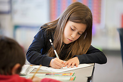 Scenes of  the Santa Rosa French-American Charter School in Santa Rosa,  California .  Students work in class.