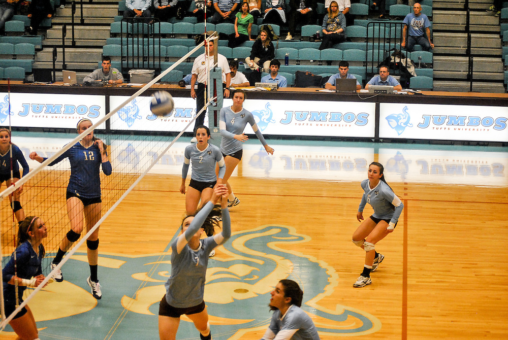10/18/2013 - Cousens Gym, Tufts Medford campus - Tufts junior, and captain, Jessica Ingrum, opposite hitter, prepares to pass the ball during the volleyball home game where Tufts defeats Hamilton 25-12. Caroline Geiling / The Tufts Daily