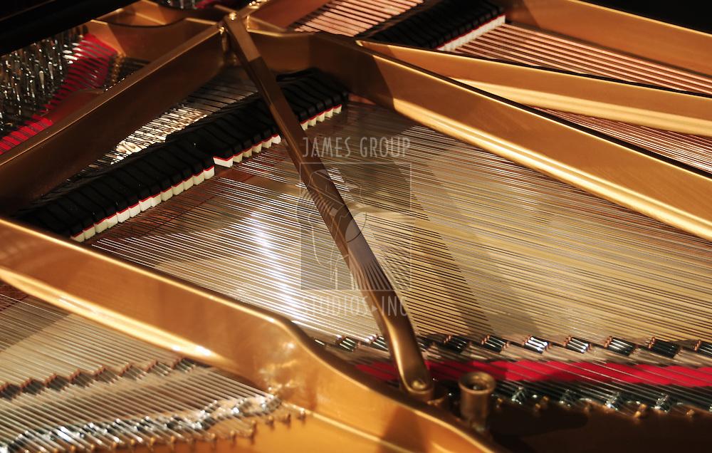 concert grand piano interior wide orientation