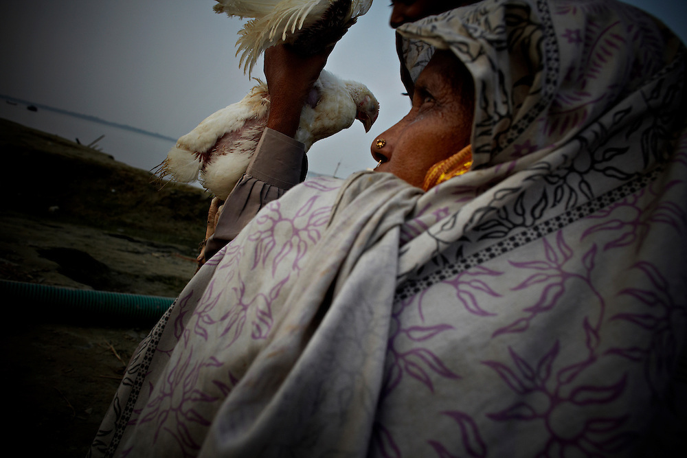 A woman and her chicken at the northern shore of Bhola..This area in the south of Bangladesh has been called ground zero of climate-change due to heavy river and ocean erosion. The lowlying area is also hugely affected by cyclones and rising sea-levels....By the Mouth of Ganges, at the Bay of Bengal is the Island of Bhola. This home of about two million people is considered to be ground zero of climate change. Half the island has disappeared in the past 40 years, and according to scientists the pace is not going to slow down. People pack up and leave as the water get closer. Some to a nearby embankment, while those with enough money move further inland, but for most life move on until the inevitable. It's always about survival for the people in one of the worlds poorest countries...Photo by: Eivind H. Natvig/MOMENT