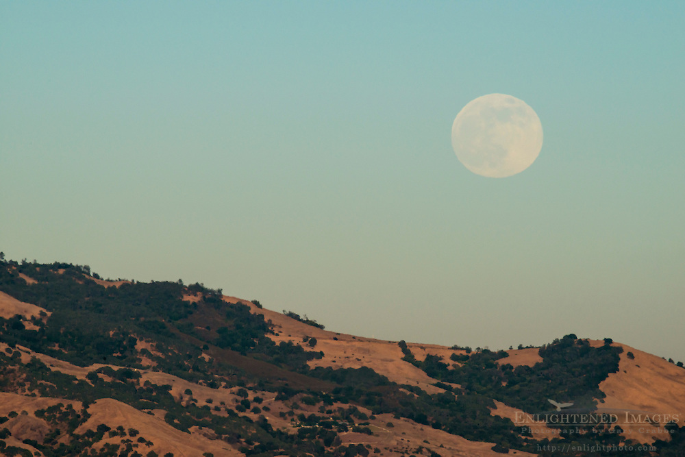 A 'super-moon' (June, 2013) Full moon rising over ridge on Mount Diablo, Contra Costa County, California