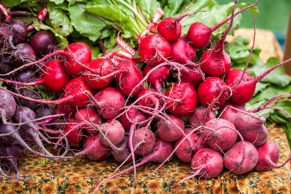 Piles of locally grown, organic Chioggia beets at the farmers' market. Uniquely beautiful, the outside is bright red and the flesh has alternating red and white concentric rings that resemble a bull's-eye. Chioggia's are an Italian heirloom,  named for a fishing town near Venice.