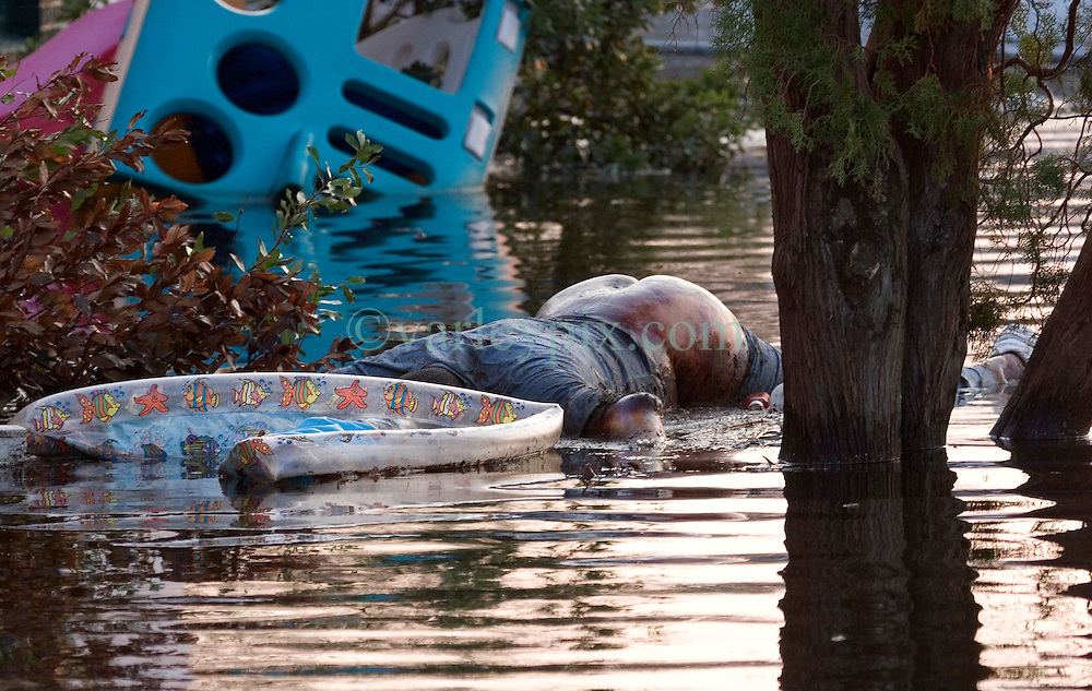 05 Sept  2005. New Orleans, Louisiana. Post hurricane Katrina.<br /> A body floats in the water near Baptist Memorial Hospital in Uptown New Orleans.<br /> Photo; ©Charlie Varley/varleypix.com