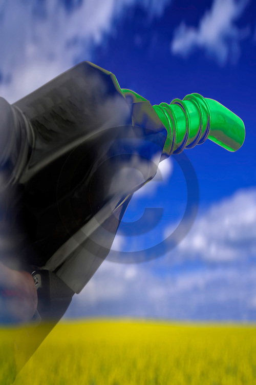 14/12/07 - LIMAGNE - PUY DE DOME - FRANCE - Photomontage pour illustrer les biocarburants et les energies renouvelables - Photo Jerome CHABANNE