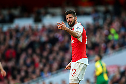 Olivier Giroud of Arsenal not happy with the referees decision - Mandatory byline: Jason Brown/JMP - 07966386802 - 30/04/2016 - FOOTBALL - Emirates Stadium - London, England - Arsenal v Norwich City - Barclays Premier League