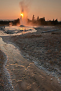 Pink Cone Geyser, Firehole Lake Drive, Yellowstone National Park, WY, on Sept. 4, 2012.  (Photo by Aaron Schmidt © 2012)