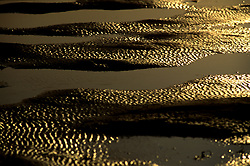 Stock photo of a detail shot of ridges in the sand at sunset