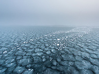 New ice forming in late autumn north of Spitsbergen. The creating of ocean ice far north of Svalbard.