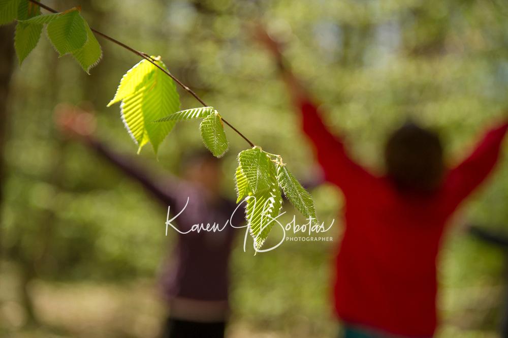 Trail Yoga at Prescott Farms Environmental Learning Center.  Karen Bobotas for the Laconia Daily Sun