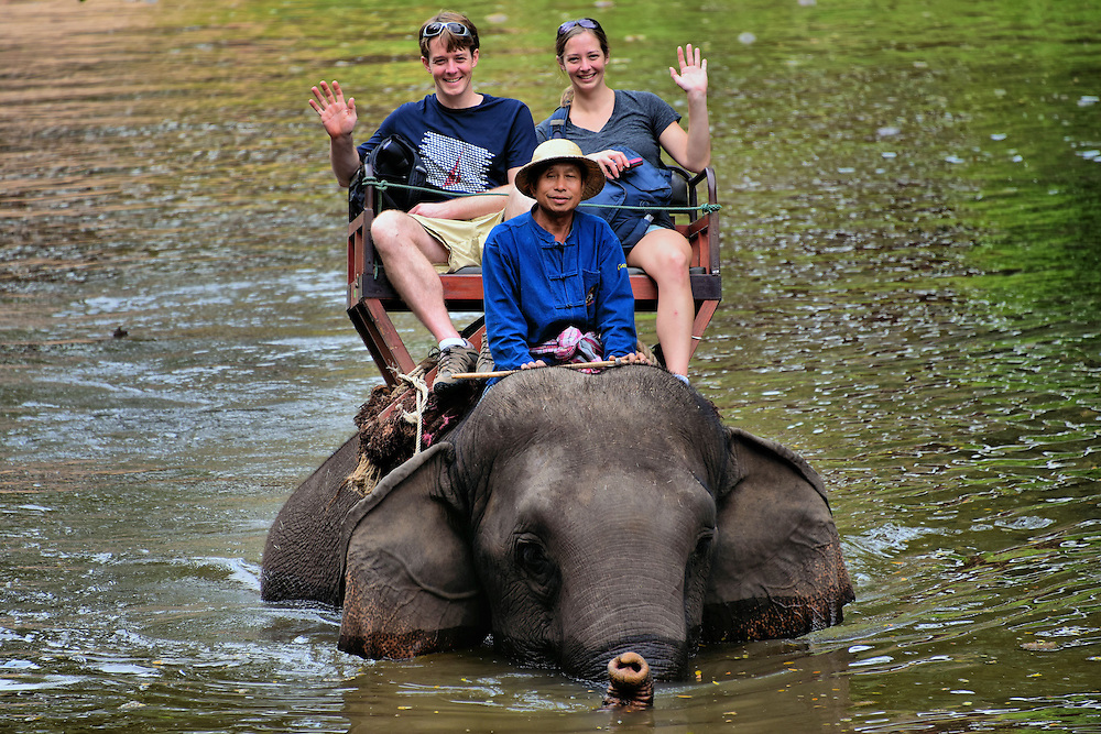 Tourists Riding Elephant in Water in Hang Chat, Thailand<br /> When these tourists were not waving for the camera, they were grabbing the sides of the bench called a howdah as the elephant swayed back and forth during a ride through a forest and stream.  It is estimated that half of the 2,700 domestic elephants in Thailand are used for tourism to fund the elephant centers.  The other half is still used as draft animals by farmers and loggers.