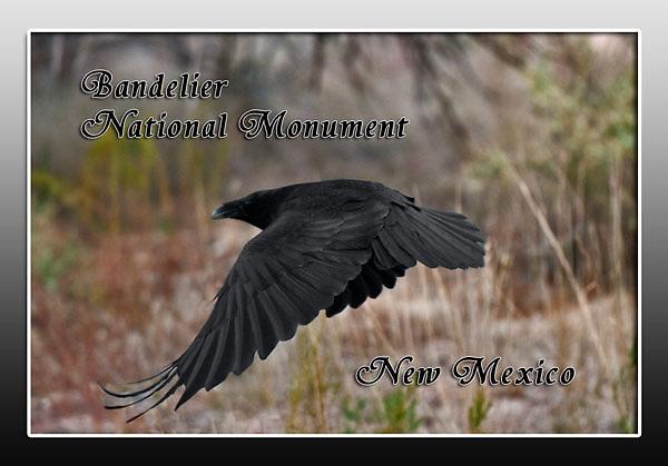 Bandelier National Monument Magnet Images