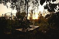 Grave site, Monduli.
