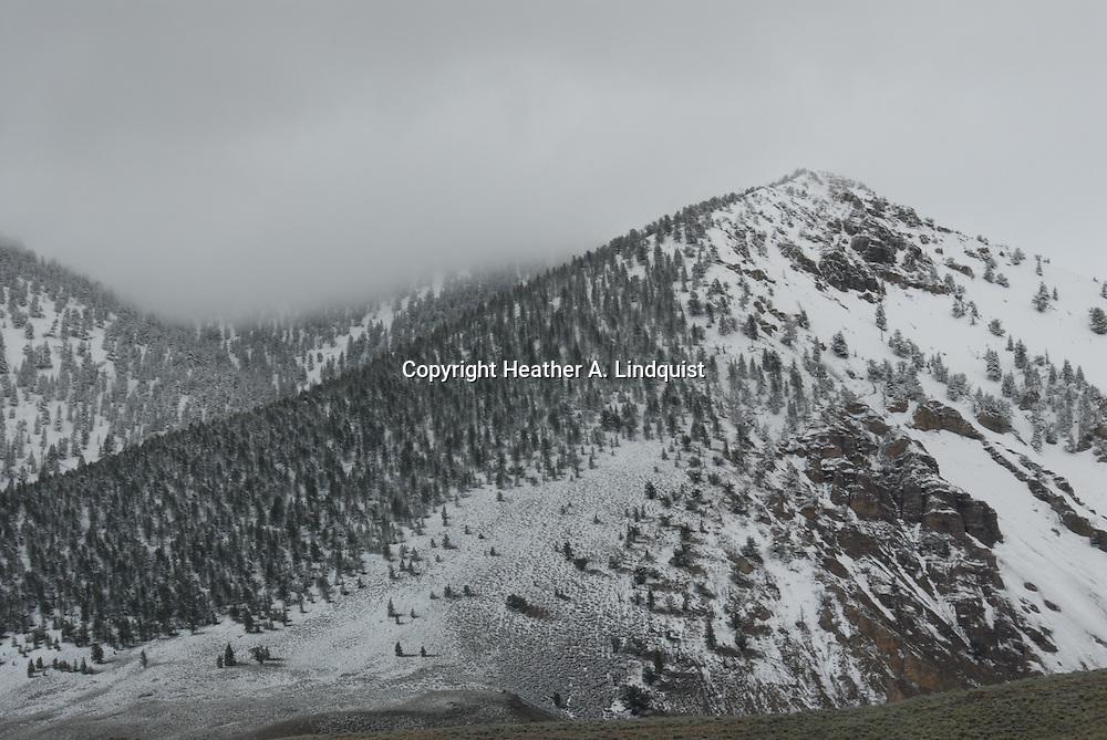 Road to Copper Basin