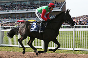 Destrier with Harry Skelton on board head for the start of the  3.00pm The Doom Bar Maghull Novices' Steeple Chase (Grade 1) 2m during the Grand National Meeting at Aintree, Liverpool, United Kingdom on 6 April 2019.
